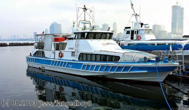 Sole cruiser run aground